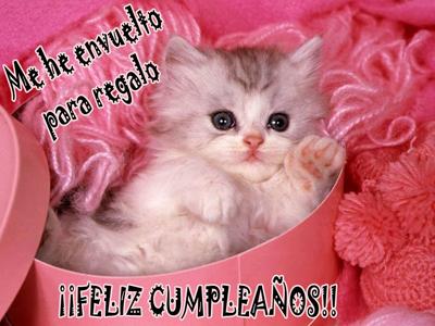 feliz cumpleaños gatito