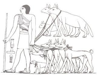 تدريب الكلاب في عهد الفراعنة
