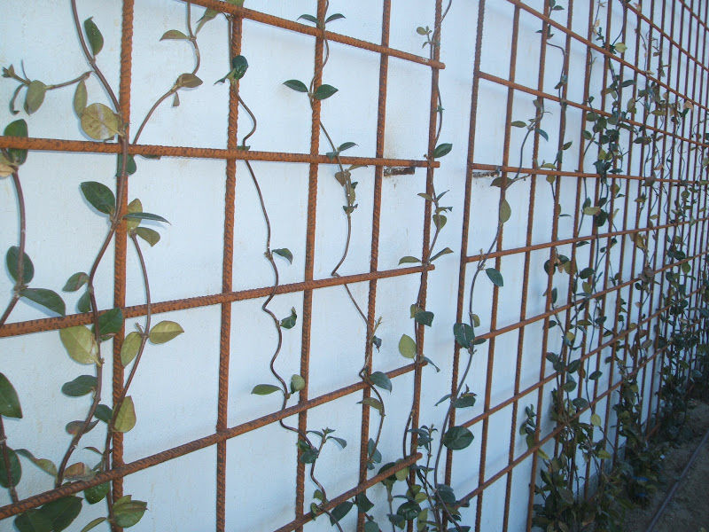 Celos as de acero paisaje libre for Celosias de jardin