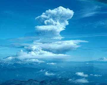 coolcloud تعرف على سبب سماع صوت المحيط في القواقع