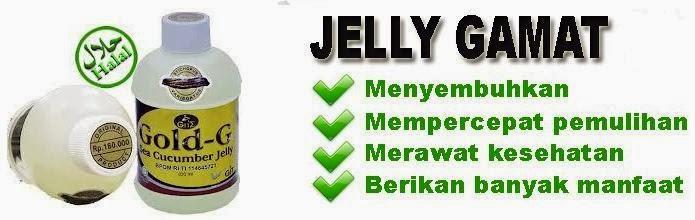 http://agenjellygamatgoldgmadiun.blogspot.com/p/cara-memesan-jelly-gamat.html