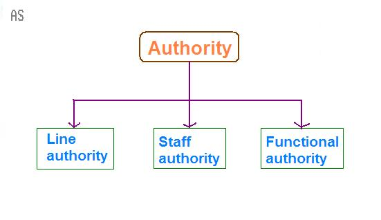 line and staff relationship definition biology