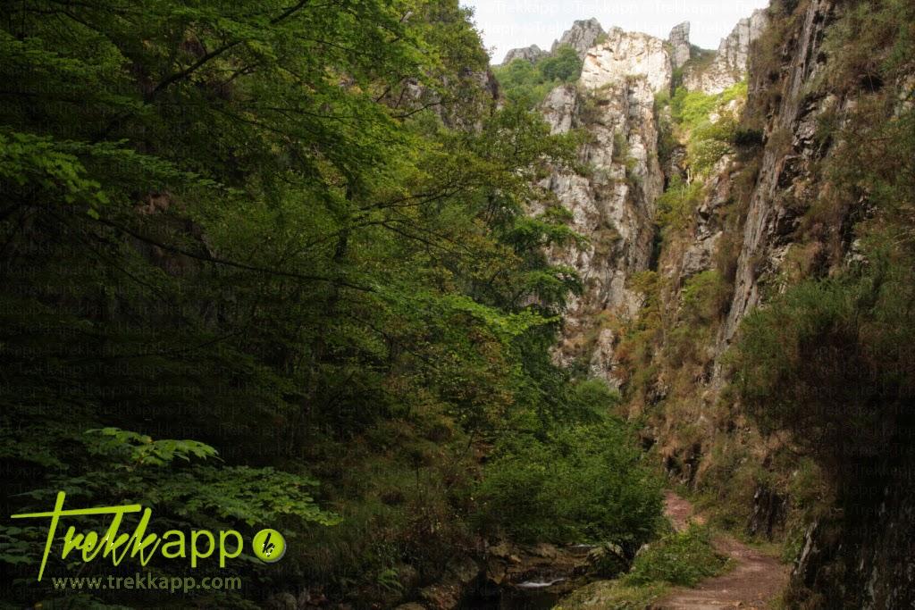 Importancia Del Agua en la Naturaleza Senderismo y Rutas en la Naturaleza la Ruta Del Alba el Agua