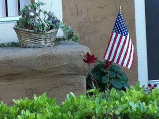 American Flag outside the door on an American stoop, flowers, hedges