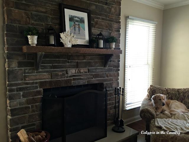 Stone Fireplace and Golden Retriever