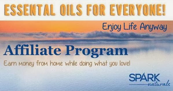 Enjoy life anyway spark naturals affiliate program work for Home affiliate programs