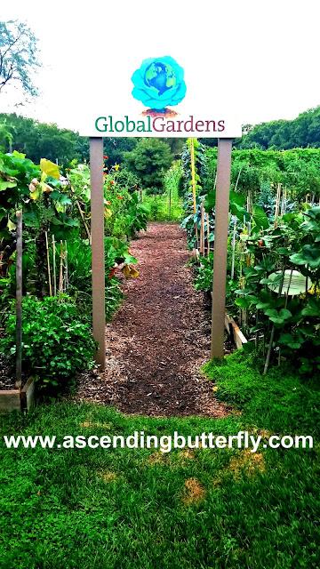 Global Gardens - The Edible Academy, New York Botanical Garden