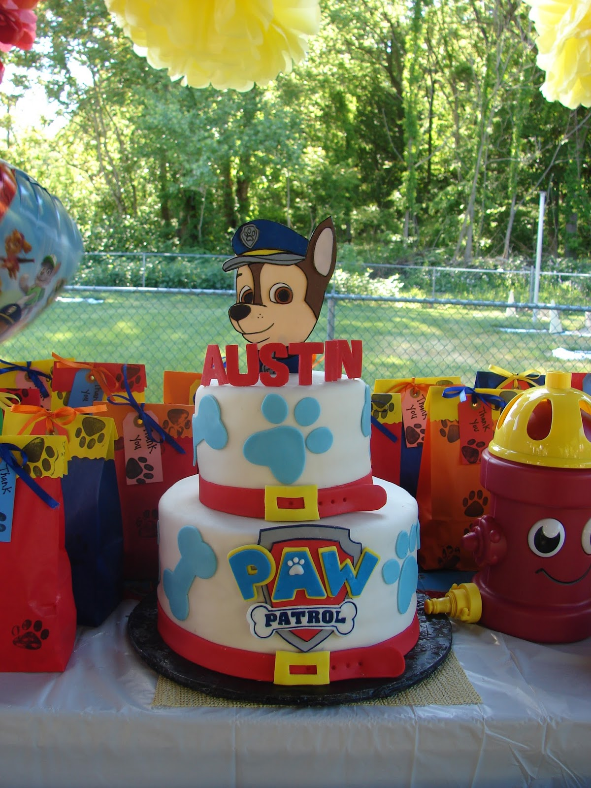 After Many Months Of Planning Here Are A Few Pic My Grandsons Paw Patrol Birthday Party