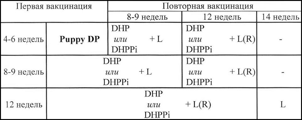 Питомник весёлый алфавит ркф-fci инструкция на эурикан и не понимаю когда ветврач после первой прививки говорит