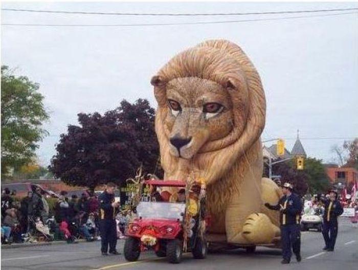 gambar perhimpunan kote bersih kuning singa penis