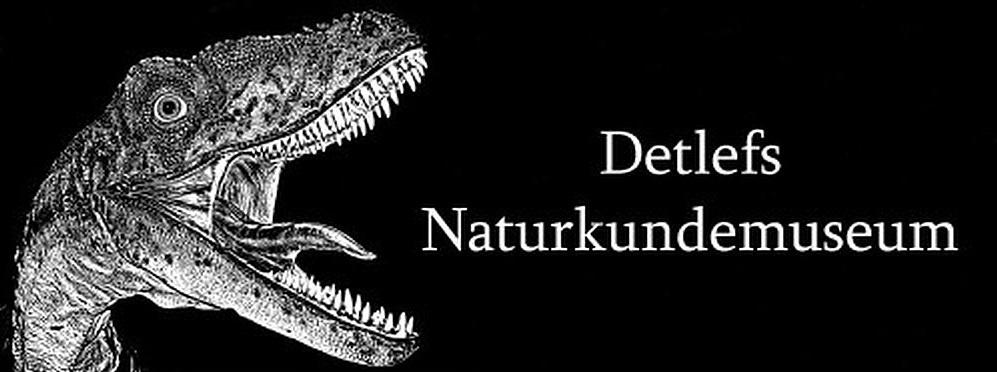 Detlefs Naturkundemuseum
