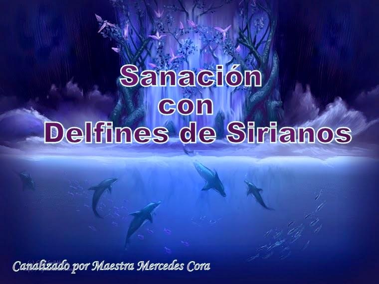 Sistema de Sanación Y armonización.