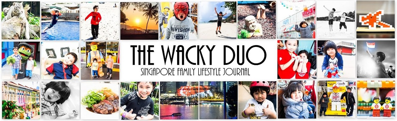 The Wacky Duo | Singapore Family and Parenting Blog |Daddy Blogger