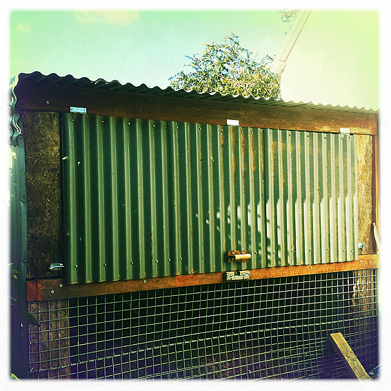 Corrugated Iron Raised Garden Beds Perth