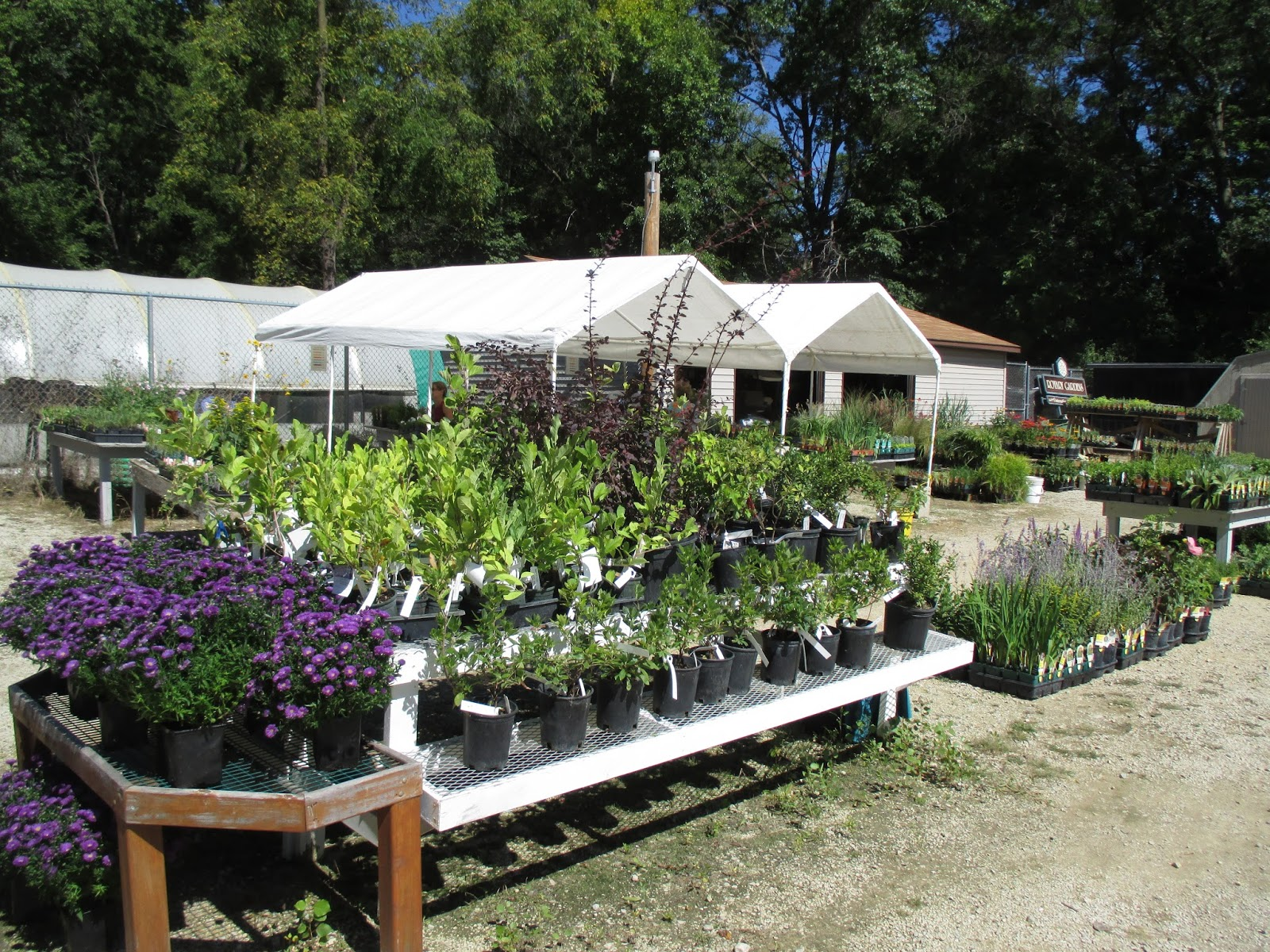 Rotary Botanical Gardens Hort Blog Plant Sale Looming
