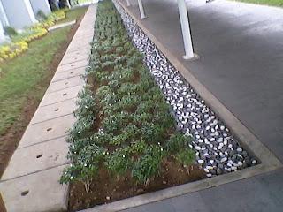 Batu tabur dipadu rombusa/sarbena mini