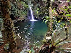 Uma das muitas cachoeiras da Reserva