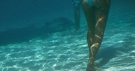 Huntington Masters Swim Team A Catamaran Tour To Stingray City Grand Cayman Cayman Islands