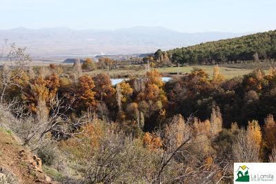 la lomilla jerez del marquesado barranco otoño vistas castaños alamos