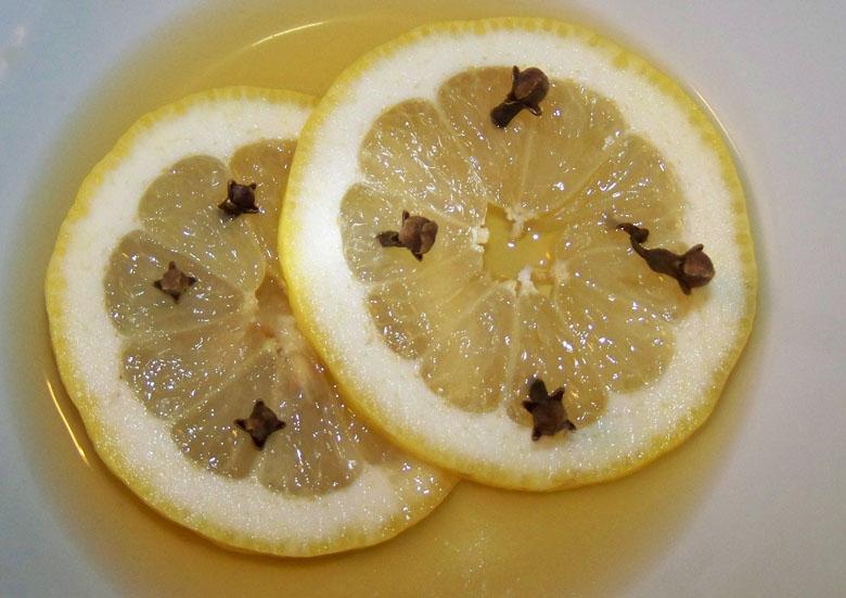 Sonobio a modo mio rimedi naturali contro le zanzare - Rimedi per le formiche in casa ...