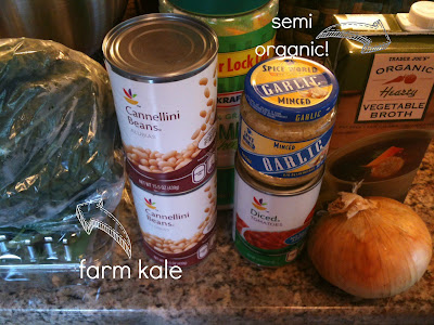 summer soup, kale, white beans, tomato, broth, onion soup, soup, CSA, csa soup, veggies, vegetable soup, vegetarian soup, vegan soup, dinner, IKEA senior, IKEA senior line
