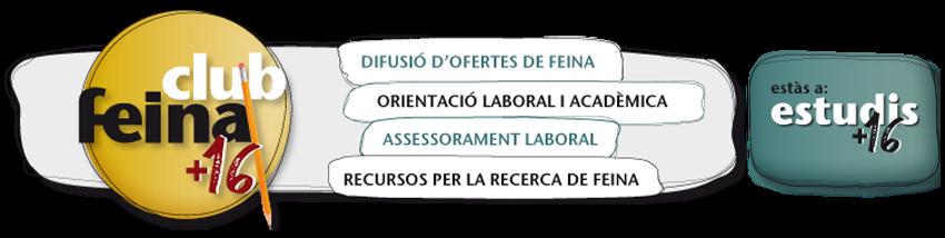 Estudis CF+16