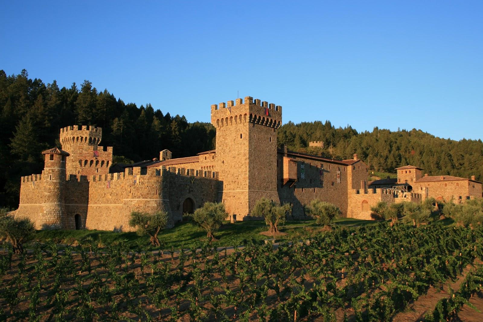 Tuscan vines 2004 castello di amorosa la castellana for Tuscan california