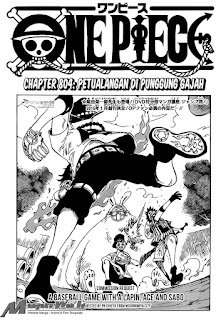 Cover One Piece 804
