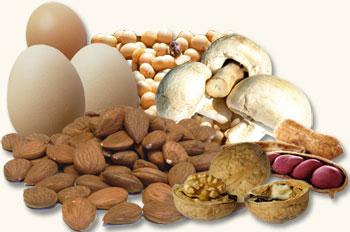 Tu gu a de nutrici n la controversia de las prote nas - Q alimentos son proteinas ...
