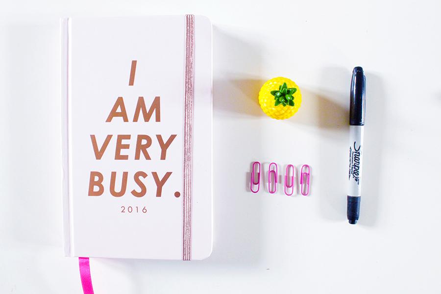 2015 Goals – How Did I Do?