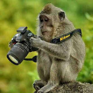 Gambar gambar lucu - www.intermezoku.com