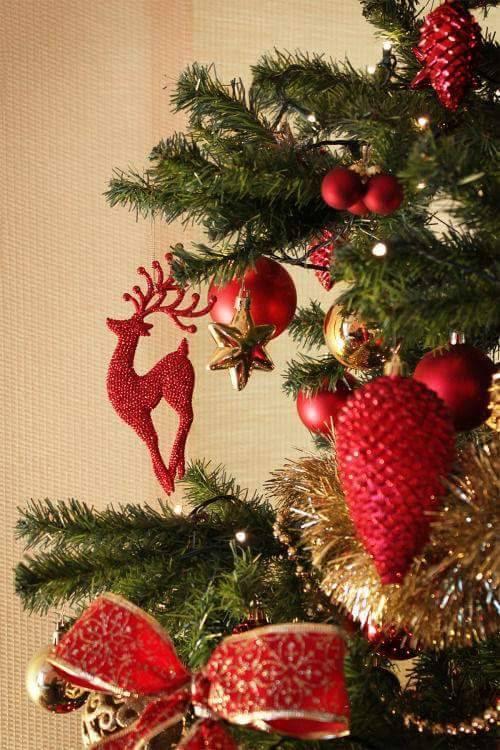 Dezembro é Natal!!!