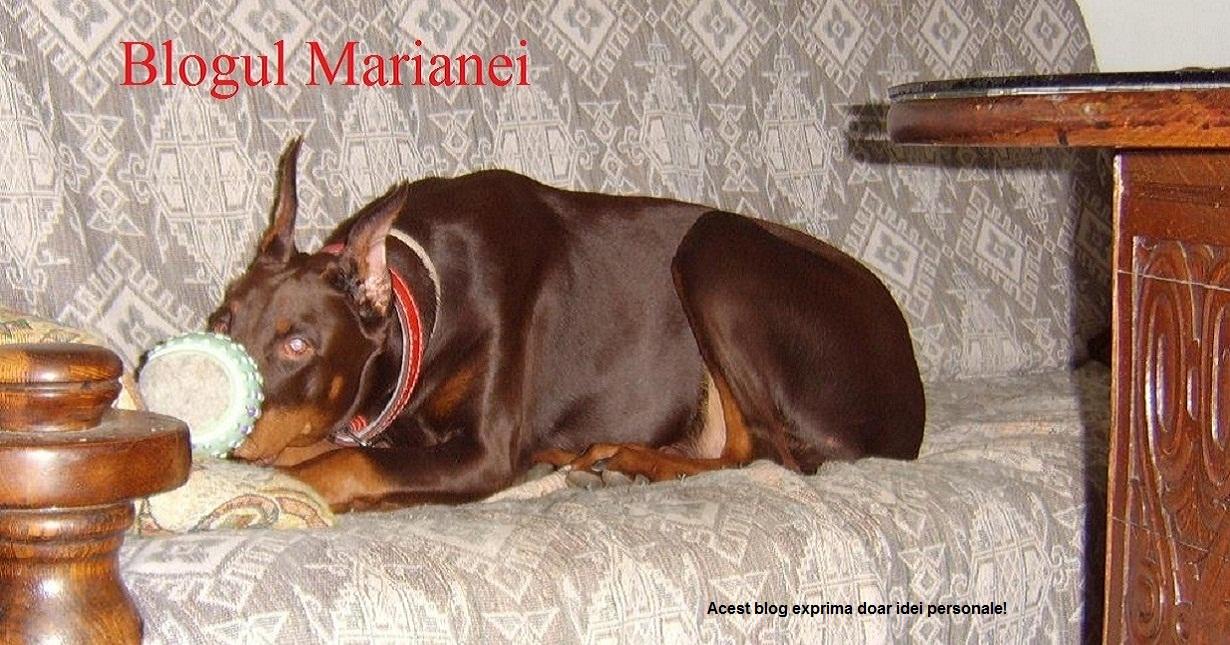 Blogul Marianei