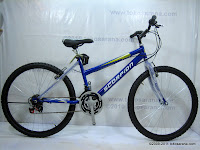 26 Inch Senator Scorpion Ocean Ladies 18 Speed Mountain Bike 1