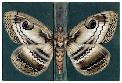 libros con mariposas