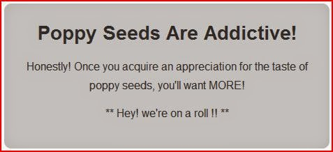 Poppy Seeds Are Addictive gray box