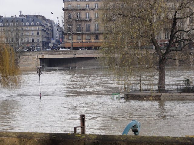 Square du Vert Galant and the flood (2)