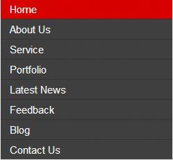 Simple Vertical CSS Menu