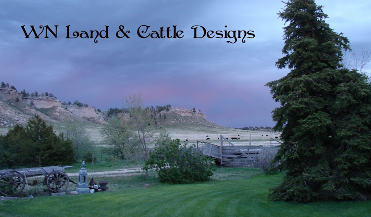 WN Land and Cattle Designs