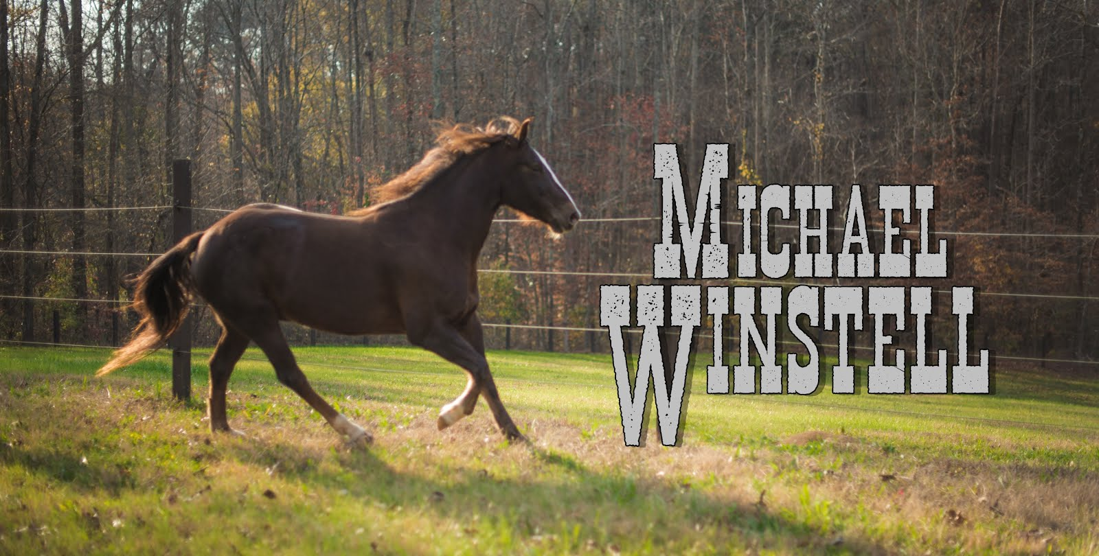 Official Homepage of Michael Winstell