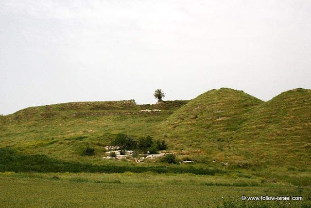 Israel Travel Guide: Tel Megiddo, Archeology and History