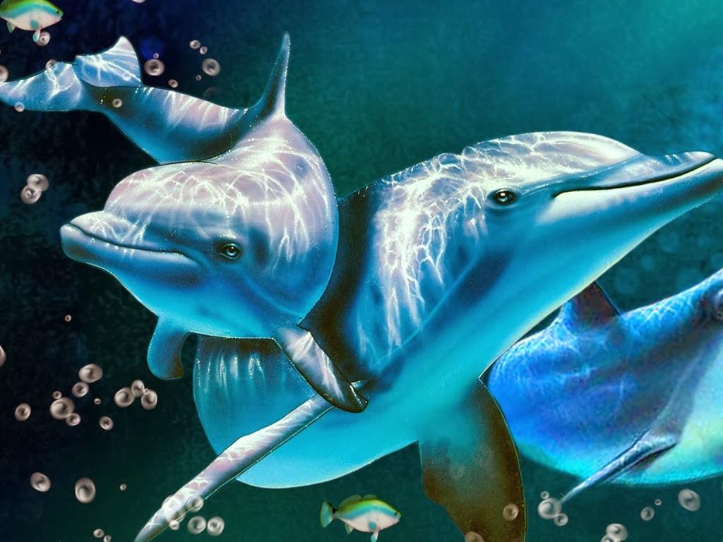 "<img src=""http://4.bp.blogspot.com/-B372TBGTyHs/UtpAJALLc1I/AAAAAAAAIwE/RzmGqmgwve0/s1600/delightful-dolphins.jpeg"" alt=""delightful dolphins"" />"