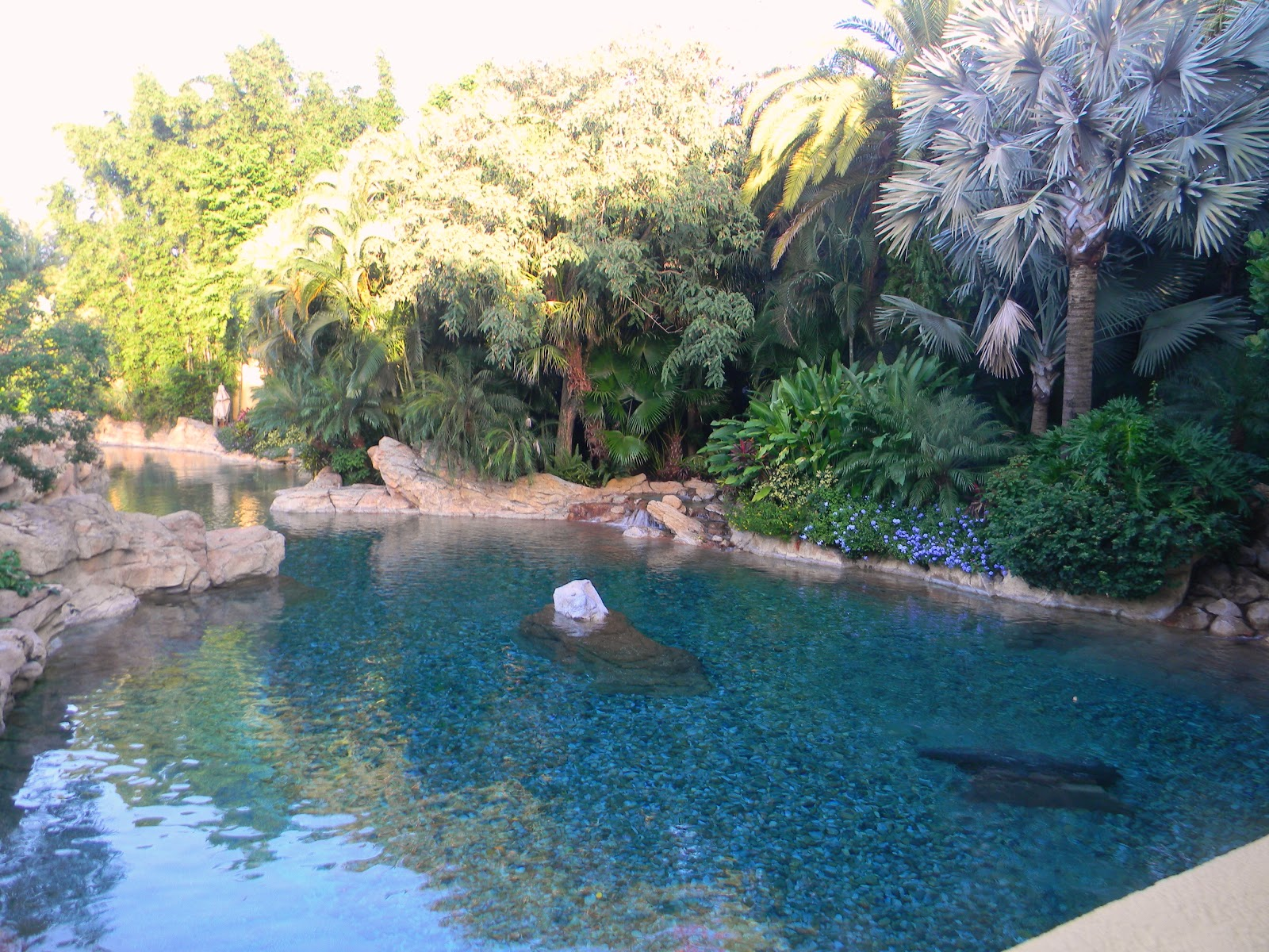Discovery Cove 2015 Discounts Html Autos Post