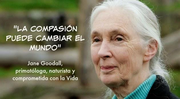 """""""LA COMPASIÓN Puede Cambiar el Mundo"""" Jane Goodall"""
