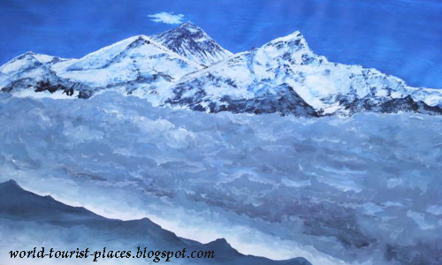 Flora and Fauna on Mount Everest