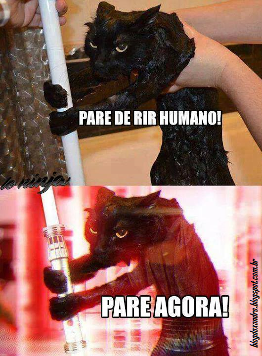 pareagora.png (530×720)