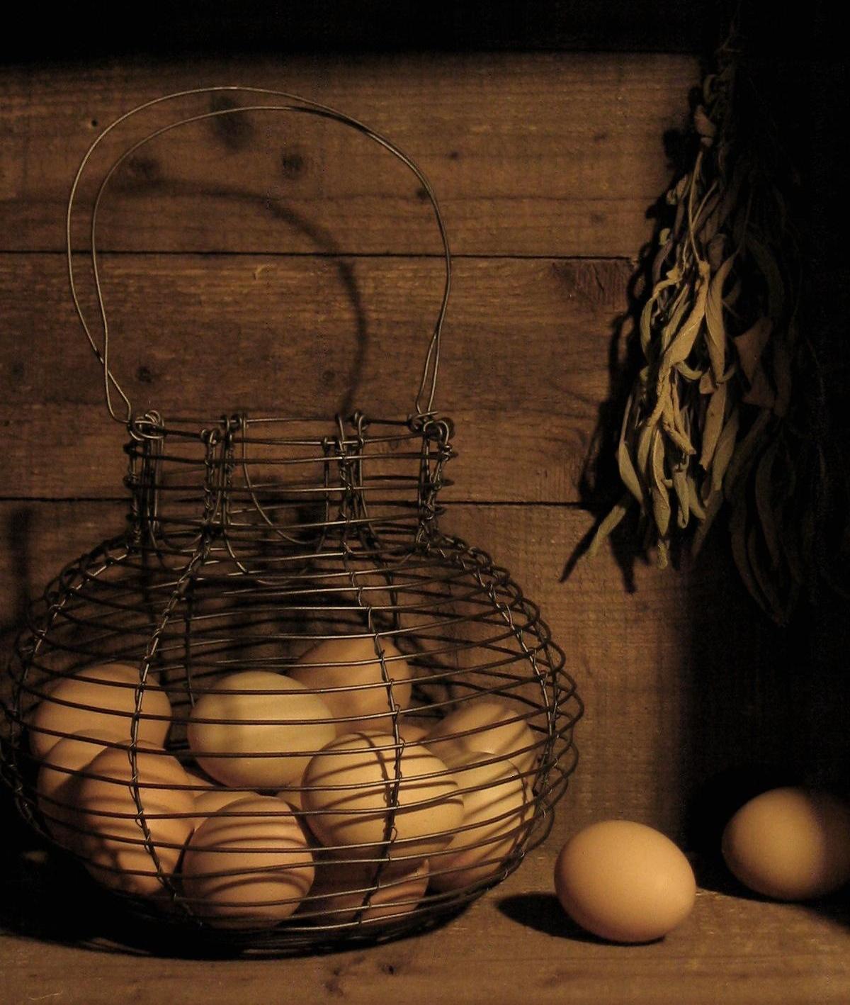 Daryl McMahon: Wire Egg basket