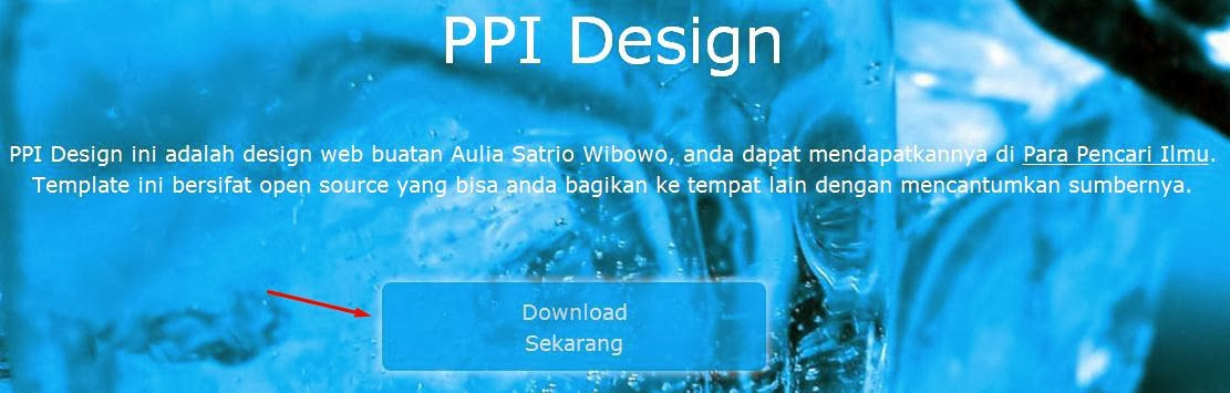 Template Web: PPI Design