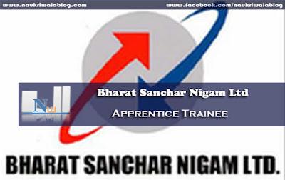 Apprentice Trainee Job 2015