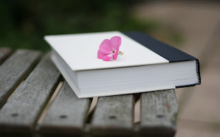 Book Pink Flower Macro HD Wallpaper